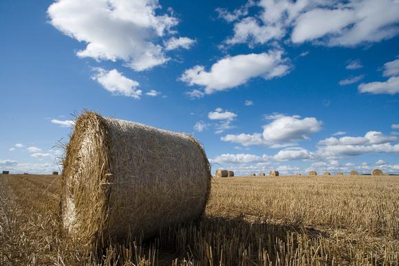 bailed hay, England